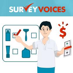 survey-voices