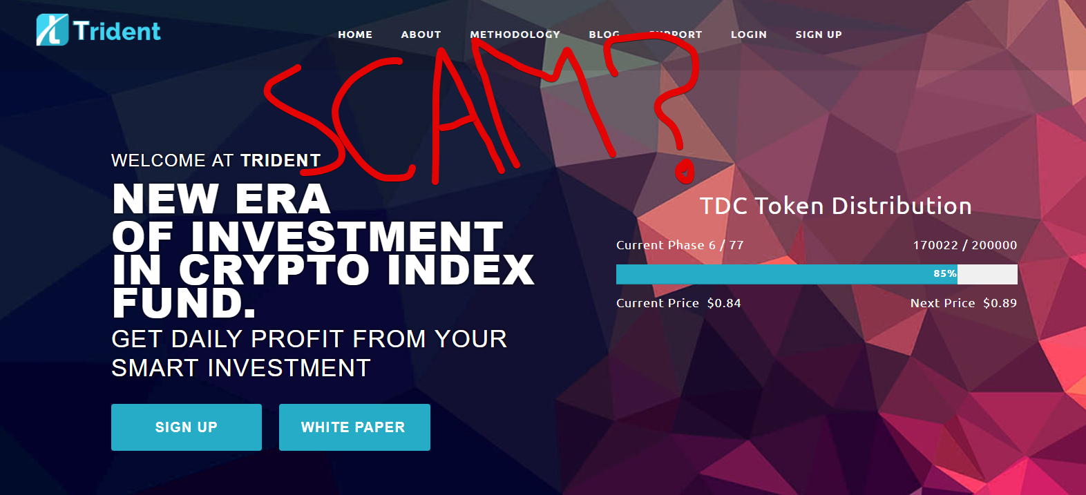 Trident Crypto Fund Scam